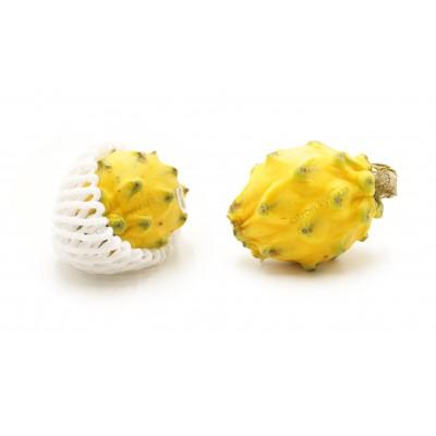 Пітахайя жовта