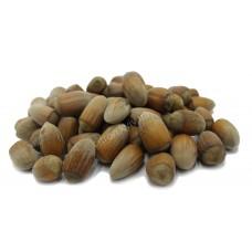 Лесной орех в скорлупе