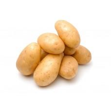 Картопля молода біла Франція