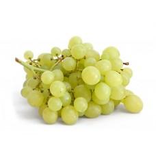 Виноград білий