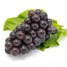 Виноград синій імпортний