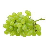 Виноград кишмиш длинный