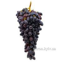 Виноград Сувернир синий