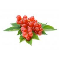Смородина красная 125гр (поричка)