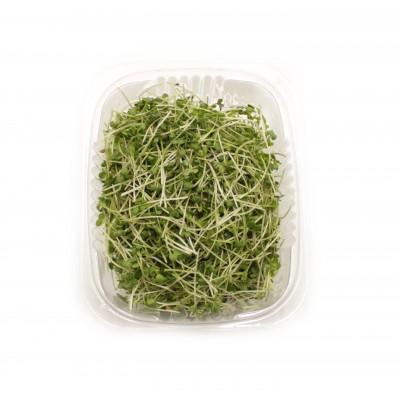 Горчица микрозелень 50гр