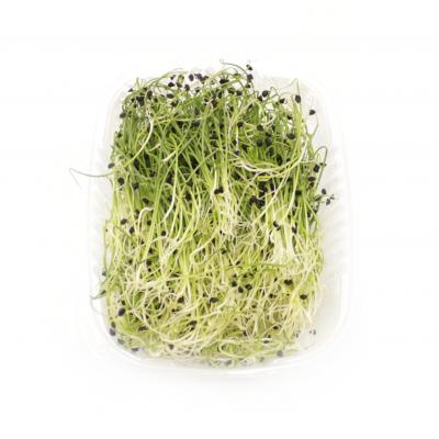 Лук микрозелень 50гр
