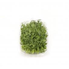 Горох мікрозелень 50гр