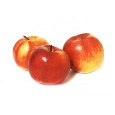 Яблуко Айдаред