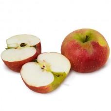 Яблуко Діскавері