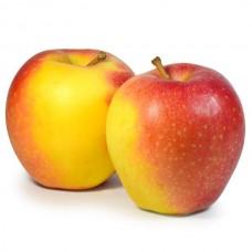 Яблуко Пінова