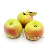 Яблуко Хоней Крісп (Медовий хрускіт) 1кг