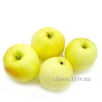 Яблуко Кальвіль Сніговий