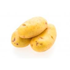 Картофель Гранада белый отборный