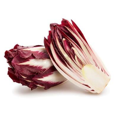 Цикорій салатний червоний