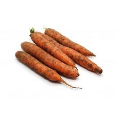 Морковь длинноплодная немытая